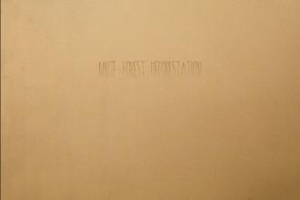 Mute Forest - Deforestation