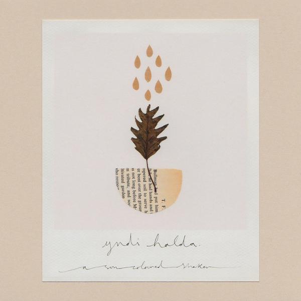 Yndi Halda - A Sun-Coloured Shaker