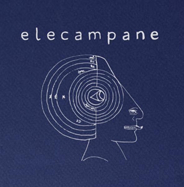 Elecampane High Hopes