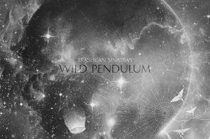 Trashcan Sinatras - Wild Pendulum