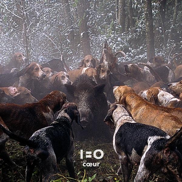 1=0 / Coeur (Quixote Music)