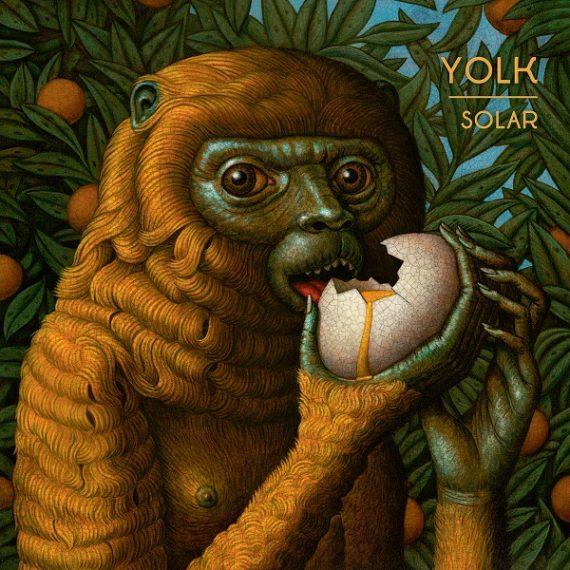 Yolk - Solar