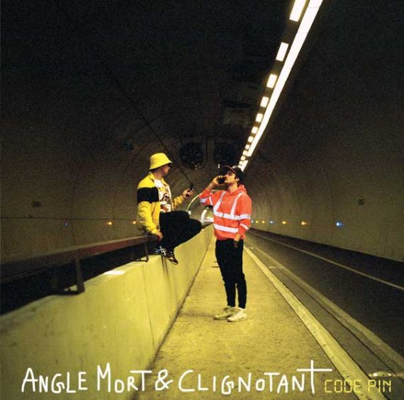 Angle Mort & Clignotant- Code Pin