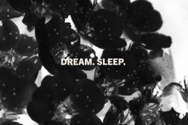 Laveda - Dream. Sleep.