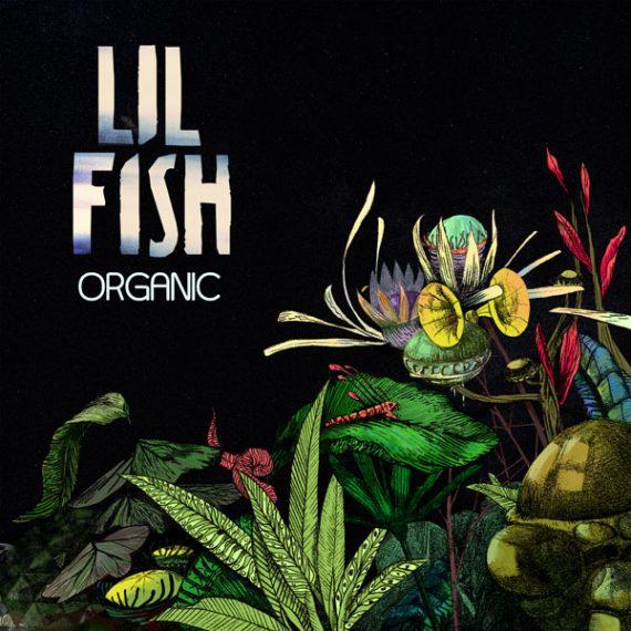 Lil Fish - Organic
