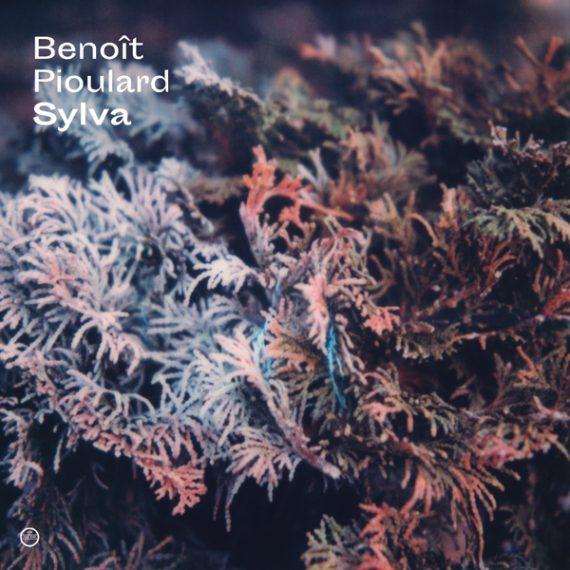 Benoît Pioulard - Sylva