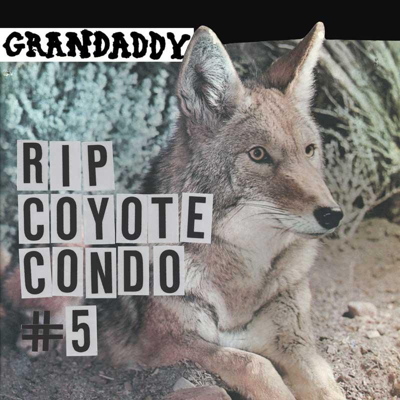 Drandaddy - RIP Coyote Condo #5