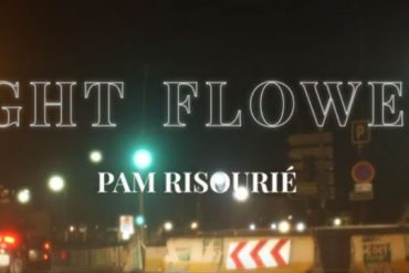 Pam Risourié - Night Flowers