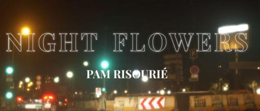 Pam Risourié - Night Flowers