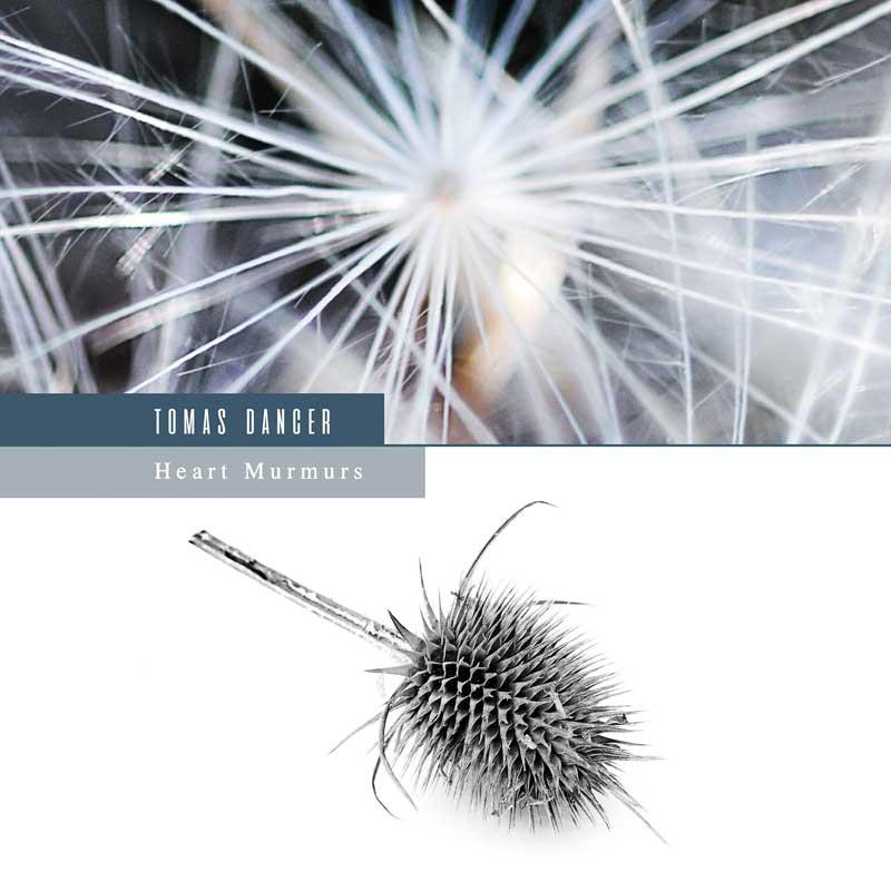 Tomas Dancer - Heart Murmurs