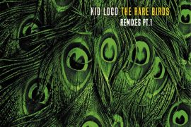 Kid Loco - The Rare Birds Remixes Part 1