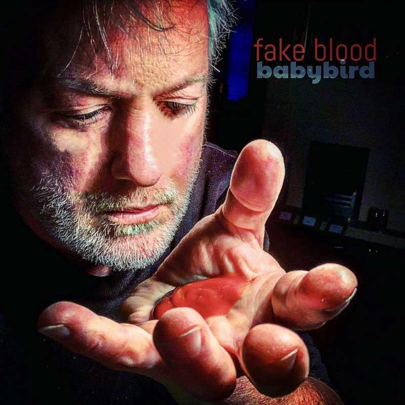 Babybird - Fake Blood