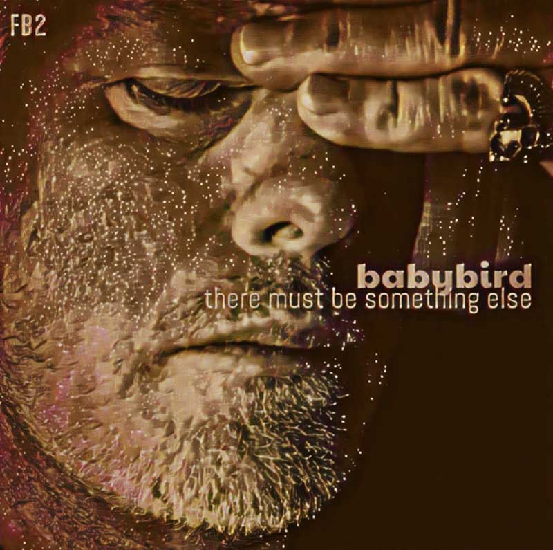 Babybird - There must be something else