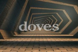 Doves - Carousels