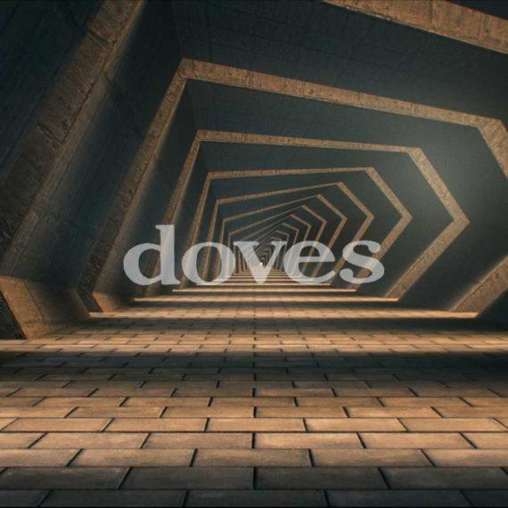 Doves - Carousels