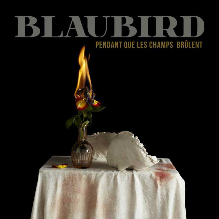 Blaubird - Pendant que les champs brûlent