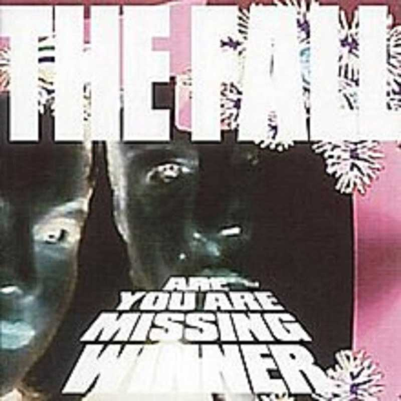 The Fall - Are You Are Missing Winner